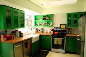 pretty-interior-design-green-small-kitchen-refrigerator